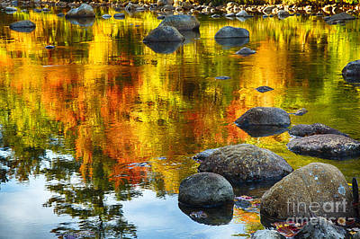 Colorful Reflections In A Creek Poster by George Oze