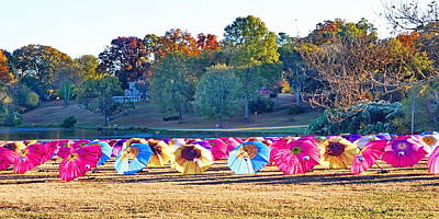 Colorful Umbrellas At The Park Poster