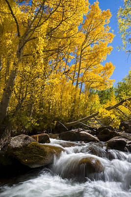 Colors And The Cascades Of South Fork Bishop Creek Poster