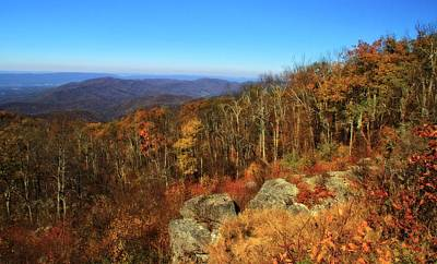 Colors Of Autumn In Shenandoah National Park Poster by Dan Sproul
