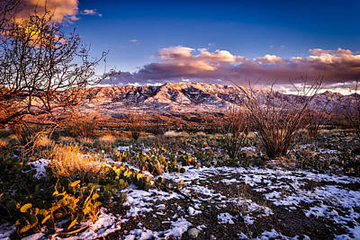 Poster featuring the photograph Colors Of Winter by Mark Myhaver