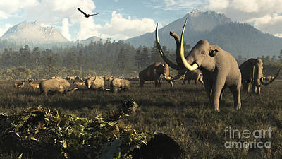 Columbian Mammoths And Bison Roam Poster by Arthur Dorety