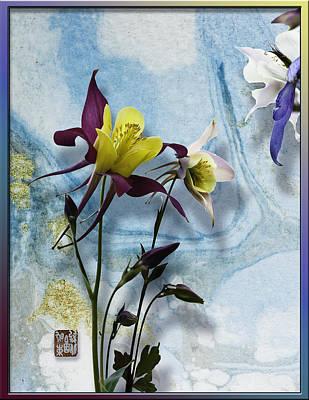 Columbine Blossom With Suminagashi Ink Poster