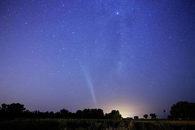 Comet Lovejoy Poster by Luis Argerich