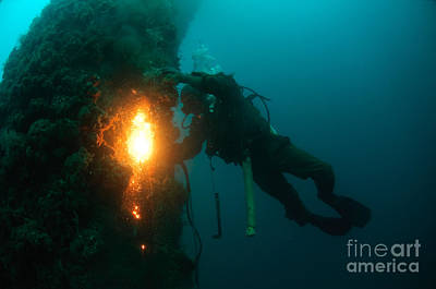 Commercial Diver At Work Poster