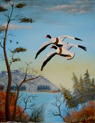 Poster featuring the painting Common Shelducks by Al  Johannessen