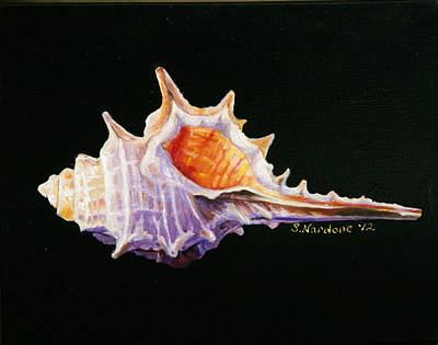Poster featuring the painting Conch Shell by Sandra Nardone
