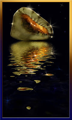 Poster featuring the photograph Conch Sparkling With Reflection by Peter v Quenter