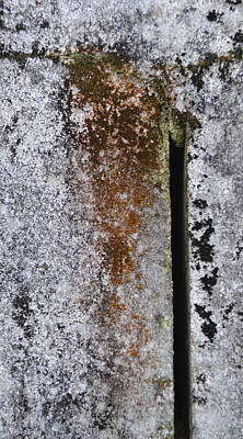 Concrete Abstract - Natures Beauty Poster