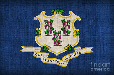 Connecticut State Flag Poster by Pixel Chimp