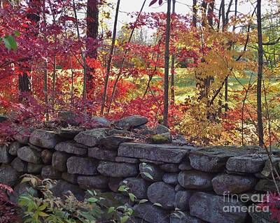 Connecticut Stone Walls Poster