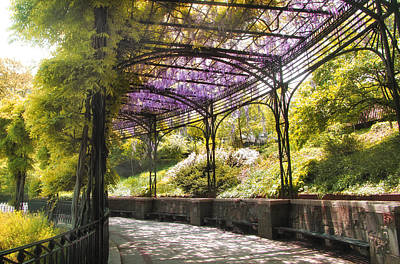 Conservatory Garden Wisteria Poster by Jessica Jenney