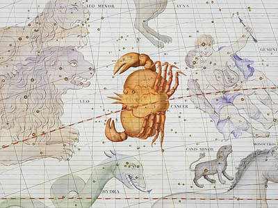Constellation Of Cancer Poster by Sir James Thornhill