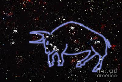 Constellation Of Taurus Poster