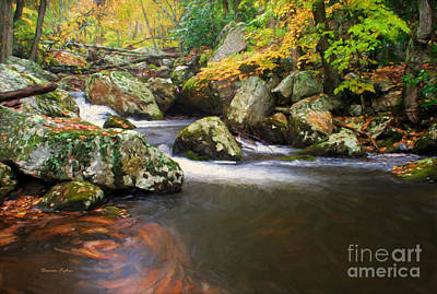 Cool Waters Of Autumn Poster