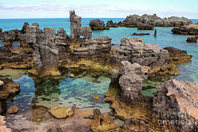 Coral Reef Outcrops In Bermuda Poster by Charline Xia