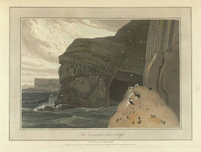 Cormorants Cave On The Cliffs Of Staffa Poster by British Library