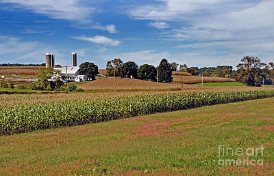 Corn Farmer Poster by Skip Willits