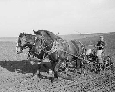 Corn Planting In Jasper County Iowa Poster by Historic Photos