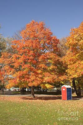 Corning Fall Foliage - 4 Poster