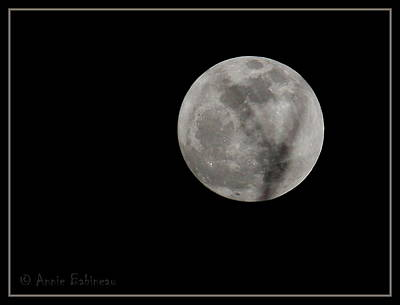 Cosmos Moon Poster