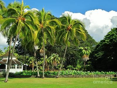 Cottage Of Kamehameha V Poster by Craig Wood