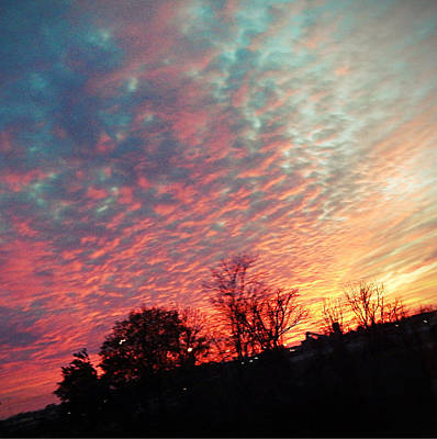 Cotton Candy Sky Poster by Joetta Beauford