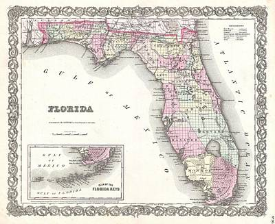 Cotton Map Of Florida 1855 Poster by Suzanne Powers