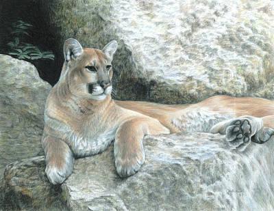 Cougar Haven Poster