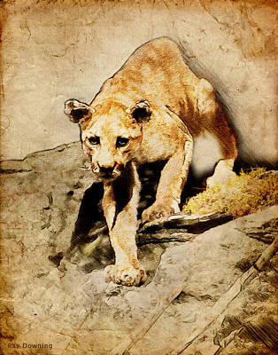 Cougar Hunting Poster by Ray Downing