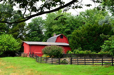 Poster featuring the photograph Country Barn Vineyard by Cathy Shiflett