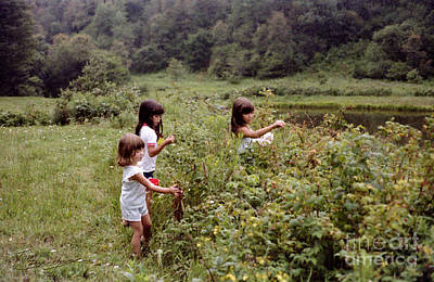 Country Girls Picking Wild Berries Poster