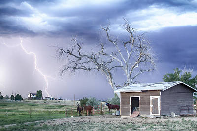 Country Horses Lightning Storm Co   Poster
