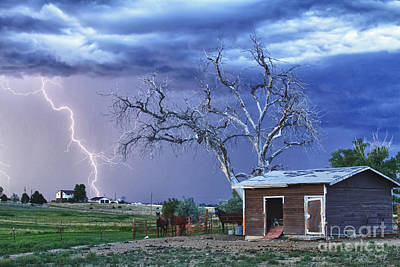 Country Horses Lightning Storm Ne Boulder County Co Hdr Poster