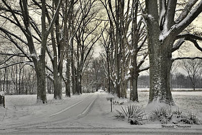 Country Lane In Winter Poster
