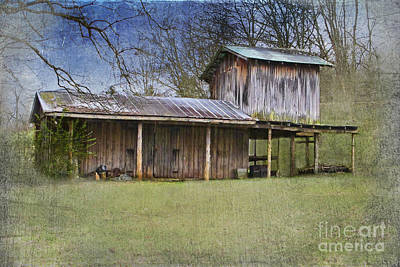 Country Life Poster by Betty LaRue