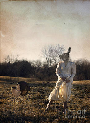 Country Rabbit Poster by Lisa Rhodes
