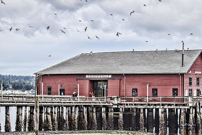 Coupeville Wharf Poster by Jeff Swanson