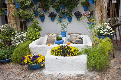 Courtyard With Washing Boards Poster