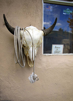 Cow Skull On Adobe Poster by Ann Powell