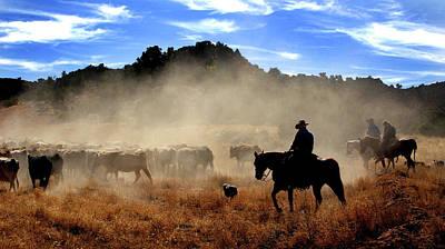 Cowboys Driving Cattle, Moab, Utah, Usa Poster