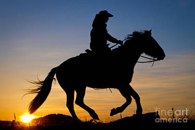 Cowgirl At Sunrise Poster by Inge Johnsson