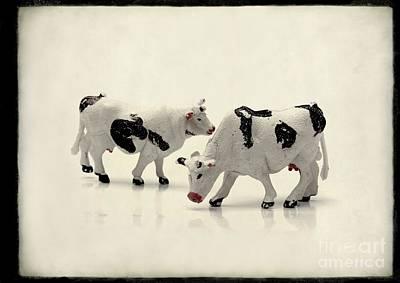Cows Figurines Poster by Bernard Jaubert