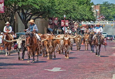 Cowtown Cattle Drive Poster by David and Carol Kelly