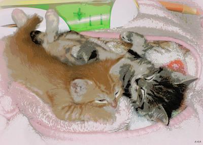 Cozy Kittens Poster
