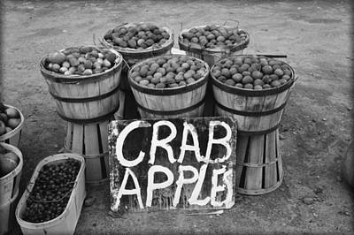 Crab Apples Poster by Bill Cannon