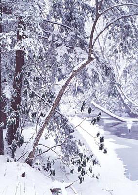 Cranberry River Deep Snow Poster by Thomas R Fletcher