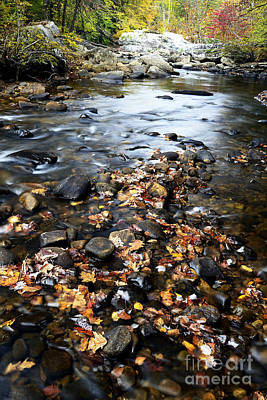 Cranberry River Fall Poster