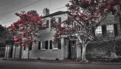 Crape Myrtles In Historic Downtown Charleston 1 Poster