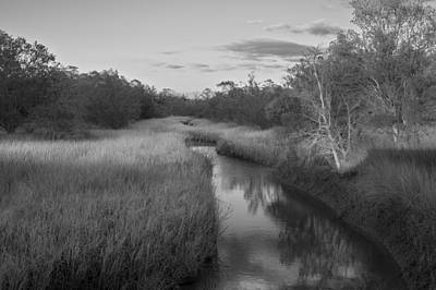 Poster featuring the photograph Creek At Wilmington Island by Frank Bright